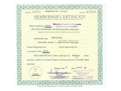 Pakistan Gloves Manufacturers & Exporters Association (PGMEA)